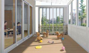 ガーデンルーム活用ペット
